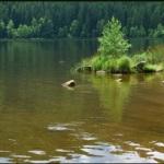 Lake.1